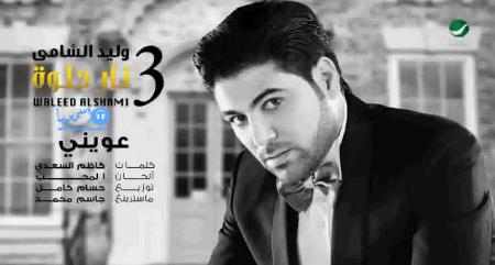 كلمات اغنية وليد الشامي نام 2014 كاملة