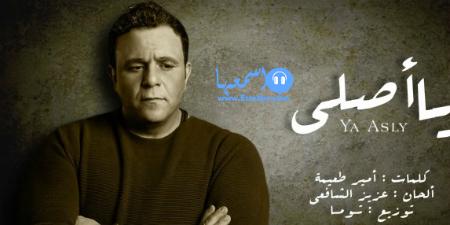 كلمات اغنية عمرو دياب مش كل واحد 2015 كاملة